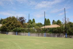 netting posts
