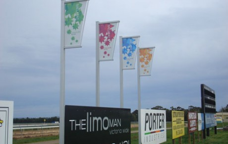 Intrapole banner